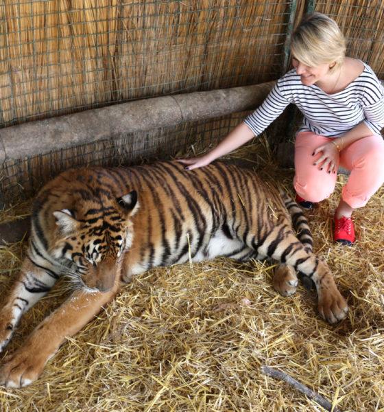 Zoo Lujan – el zoológico mas popular de la Argentina